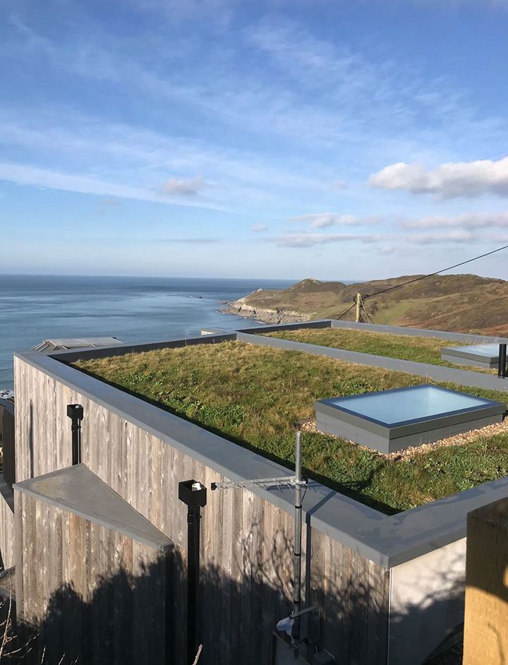 View over the green roof our across the sea